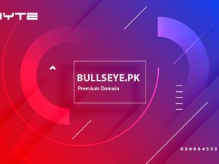 Bullseye.pk premium domain for sale