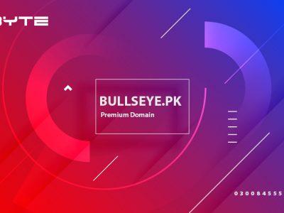 Bullseye.pk premium domain for sale